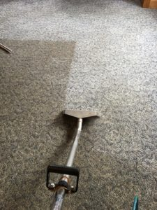Berber Carpet Clean Before and After